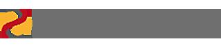DENK IN LÖSUNGEN Logo